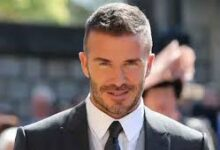 Photo of David Beckham shows off his new talent with DIY beehive during quarantine